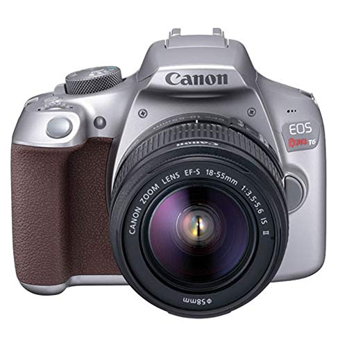 Canon EOS Rebel T6 Digital SLR Camera Kit with EF-S 18-55mm f/3.5-5.6 is II Lens (Limited Edition Metallic Gray) (Canon Camera Gray)