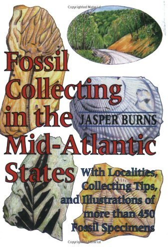 By Jasper Burns Fossil Collecting in the Mid-Atlantic States: With Localities, Collecting Tips, and Illustrations of (A Robert G Merrick Ed) - Strata Jasper