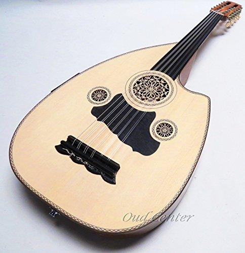 Professional Electric/ Acoustic Cut Away Sandi Oud, Fretless Guitar!