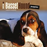Basset Hound Puppies  18-Month 2014 Calendar