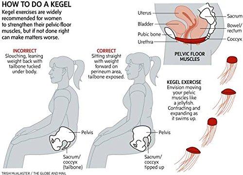 Premium Kegel Exerciser Training Kit For Bladder Control