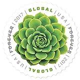 Global: Green Succulent USPS International Forever Stamps Sheet of 10 - 2017