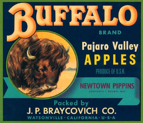(BUFFALO PAJARO VALLEY APPLES CALIFORNIA USA FRUIT CRATE LABEL CANVAS REPRODUCTION)