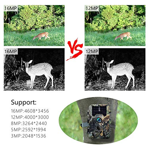 Trail Camera,16MP 1080P 2.4' LCD HD Deer Hunting Camera 46pcs 850nm Low-Glow IR LEDs 120° PIR Sensors,up to 0.2s Trigger Time,up to 65ft Night Vision,IP 56 Waterproof (Camouflage + 32G SD Card)