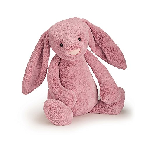 Fluffy Pink Bunnies (Jellycat Bashful Tulip Pink Bunny Stuffed Animal, Small, 7 inches)