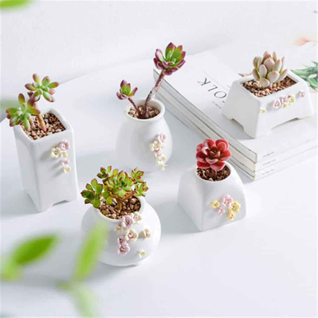 JUSTDOLIFE 5PCS Succulent Pot Creative Cute Flower Decor Ceramic Flower Pot Gardening Pot