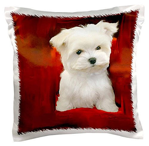 3dRose pc_4219_1 Maltese Puppy-Pillow Case, 16 by 16