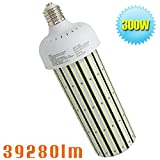 1500Watt Metal Halide Warehouse High Bay Light Replacement 300W LED Corn Light Bulb,HID,HPS Retrofit,Large Mogul E39 Base,6000K Daylight White in Workshop,Storage Room