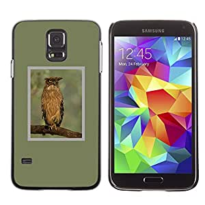 Planetar® ( Owl Green Branch Feathers Wings Spring ) SAMSUNG Galaxy S5 V / i9600 / SM-G900F / SM-G900M / SM-G900A / SM-G900T / SM-G900W8 Fundas Cover Cubre Hard Case Cover