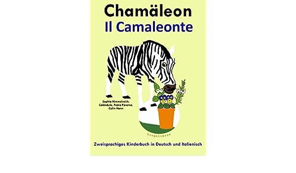 Sehen - muss man lernen: Sehen - kann man lernen (German Edition)