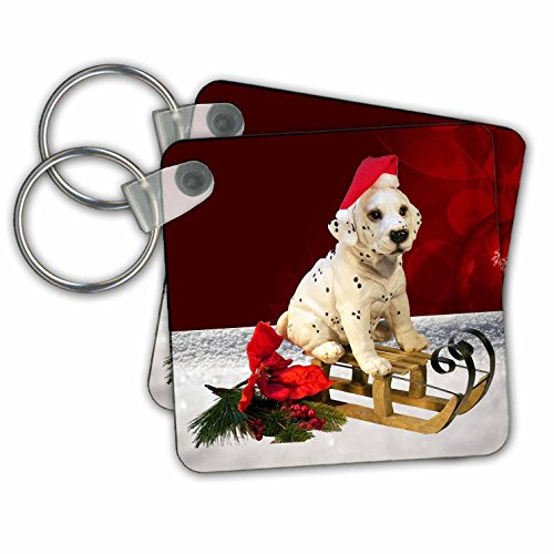 Sandy Mertens Christmas Animals - Little Toy Dalmatian Dog on Sled with Santa Hat - Key Chains - set of 6 Key Chains (kc_269519_3) - Dalmatian Keychain