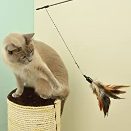 The Natural Pet Company Feather Wand Cat Toy (Includes 3x Feather Refills), these Natural Feathers are Guaranteed to Drive Your Cat Wild