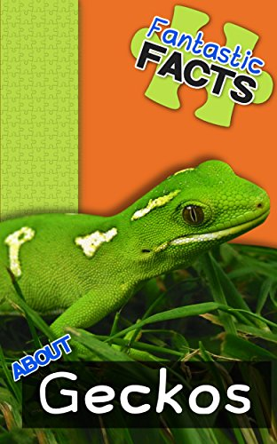 Fantastic Facts About Geckos: Illustrated Fun Learning For Kids by [Merchant, Miles]