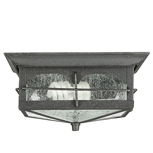 Two Light Outdoor Flush - Home Decorators Collection Flushmount 2-Light Outdoor Aged Iron Lantern