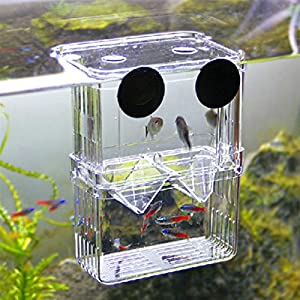 Hot sale multifunctional fish breeding for Amazon fish tanks for sale