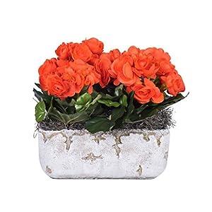 "Vickerman Begonia Arrangement Everyday Floral, 10"", Orange 91"