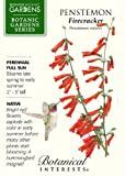 Penstemon Firecracker Seed