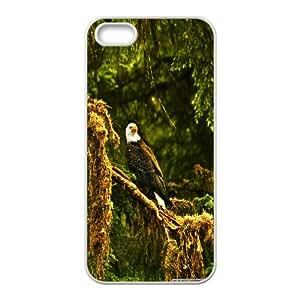 IPhone 5,5S Case Eagle 5, Flying Eagle Kweet, {White}