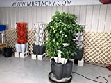 Mr. Stacky Smart Farm - Automatic Self Watering