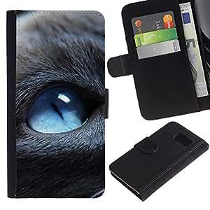 Protector de cuero de la PU de la cubierta del estilo de la carpeta del tirón BY RAYDREAMMM - Sony Xperia Z3 Compact - Blue Eyed Cat