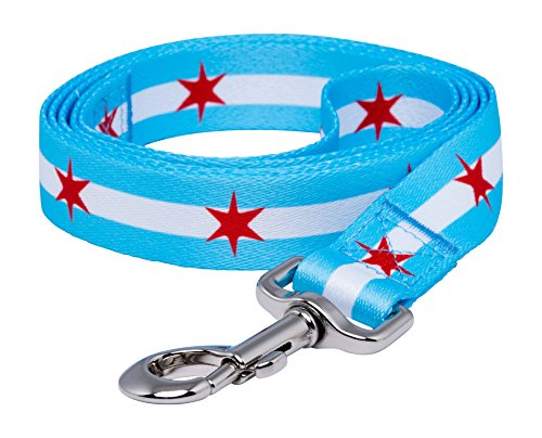 Chicago Flag Dog Leash - Big Stars (1 in) -