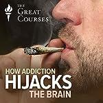 How Addiction Hijacks the Brain | Thad A. Polk