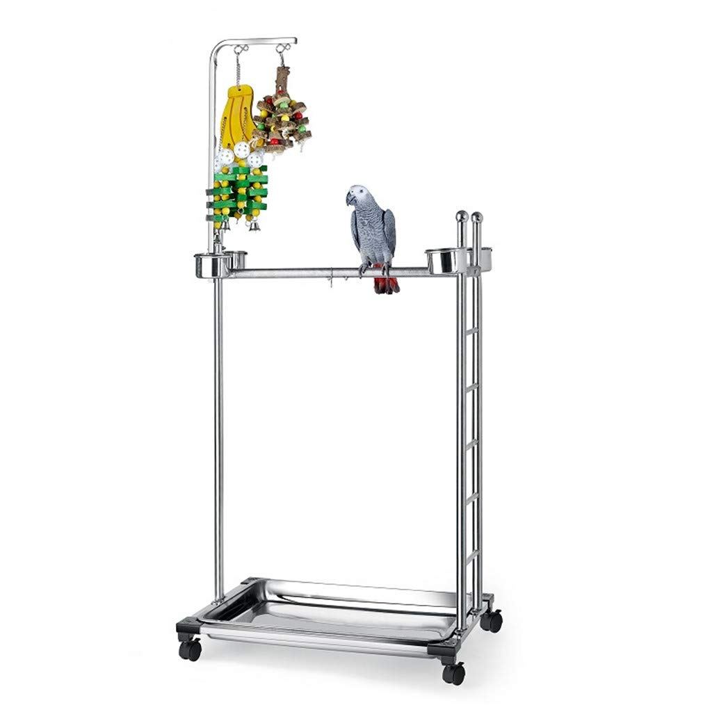 Parrot Stand Stainless Steel, Large Bird Stand Plus Caster and Toy, Suitable for Large Parrots in The Diamond-Gray Parrot, 57 Inches by Danm