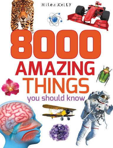 8000 Amazing Things You Should Know 512 Page Fact Miles Kelly
