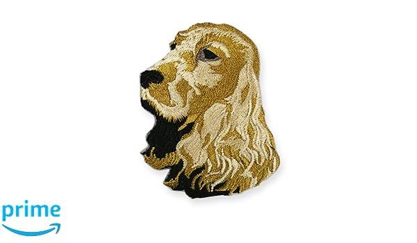 Parche bordado para planchar o coser, en forma del Cocker Spaniel dorado: Amazon.es: Productos para mascotas