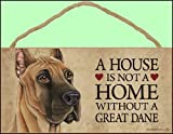 A house is not a home without Great Dane Dog - 5