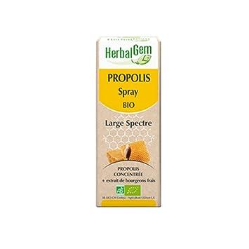 Amazon com: Herbalgem From Organic Propolis Spray: Health