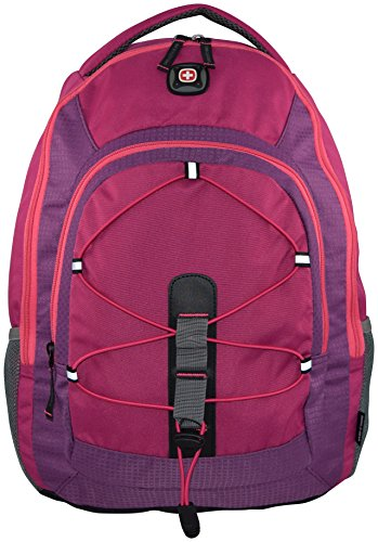 SwissGear Mars Backpack Laptop Compartment