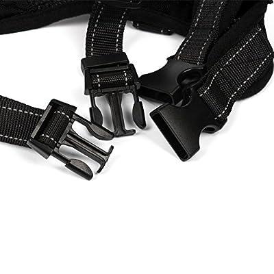 Harnais Anti-Traction pour Petit Moyen Chien Chiot en Tissu Oxford 600D Noir L-FUNKEEN/®