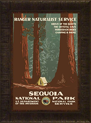 Sequoia 23.5x17.5 Travel Poster National Park California Sierra Nevada Visalia Vacation Naturalist Framed Art Print Wall Décor - John Whitney Mt Muir Trail