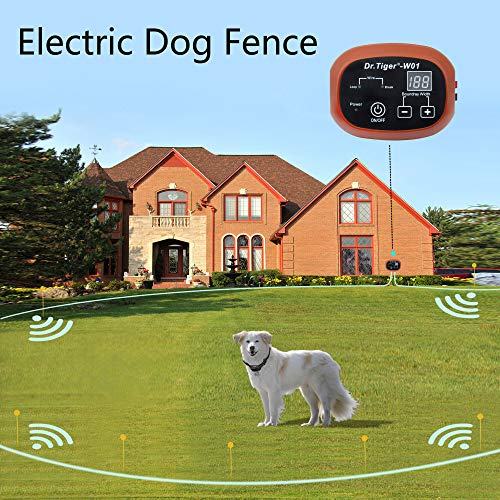 Dr.Tiger 2 Receivers Electric Dog Fence, Invisible Fence for