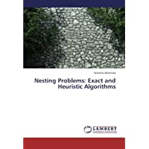 Nesting Problems: Exact and Heuristic Algorithms