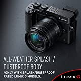 PANASONIC LUMIX G LENS, 25MM, F1.7 ASPH., MIRRORLESS MICRO FOUR THIRDS, H-H025K (USA BLACK)