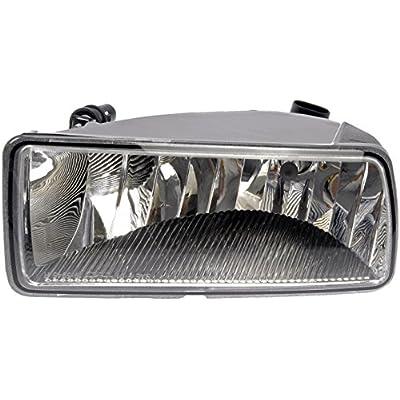 Dorman 923-816 Passenger Side Fog Light Assembly for Select Ford Models: Automotive