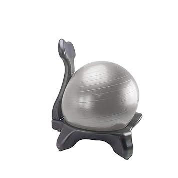 Amazon.com: Silla de pelota, Premium Fitness Ejercicio Bola ...