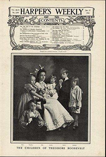 President Teddy Roosevelt's Children Family Portrait 1901 great antique print