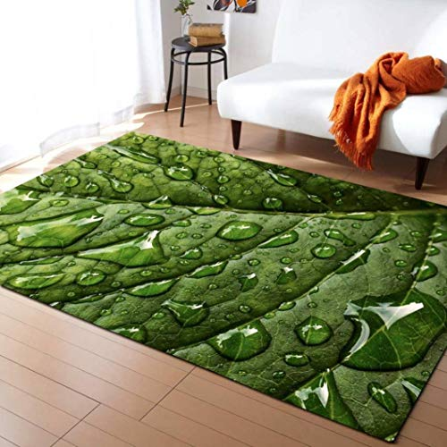 Large 3D Carpets Green Leaf Vein Rug Bedroom Kids Room Play Mat Memory Foam Carpet Parlor Home Decorate -