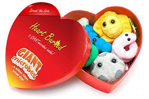 Giant Microbes Heart Burned Gift Box of Mini Microbes
