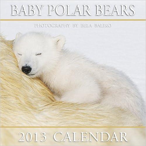 2013 Mini Baby Polar Bears