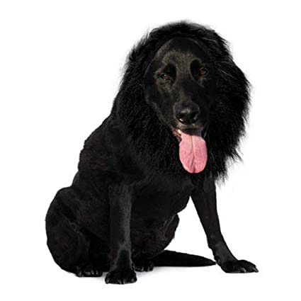 Qiao Niuniu Lion Mane Wig For Dog   Pet Costume   Halloween Cloth Festival  Fancy Dress