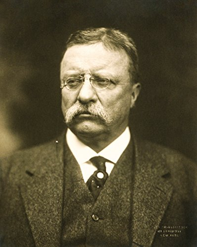Theodore Teddy Roosevelt 1915 Portrait Photo Great Americans Photos 8x10 (Theodore Roosevelt Portraits)