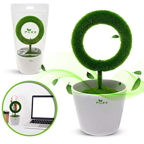 Plant Air Purifier for Desktop Removes Airborne Particles Smoke Air Pollutant Allergen Dust Pollen PM2.5 for Asthma Allergies Smokers Pets Air Cleaner Ionizer Releasing Negative Ions for Home Office