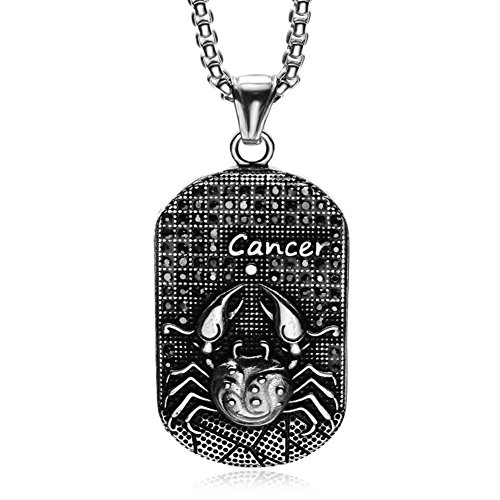 HIJONES Men's Stainless Steel 12 Constellations Zodiac Sign Cancer Dog Tag Pendant Necklace Vintage Silver Black (Best Dog For Zodiac Sign)