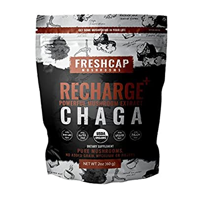 RECHARGE- Chaga Mushroom Extract Powder - USDA Organic -60 g- Supplement - Balance and Restore - Add to Coffee/Tea/Smoothies-Real Fruiting Body No Fillers