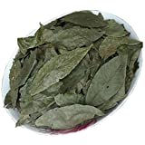 Pure Wild Original Ecology Cyclocarya Paliurus Leaf Tea Health Care Tea 250g