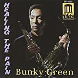 Healing the Pain by Bunky Green (2013-05-03)